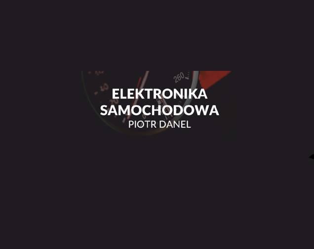 Elektronika Samochodowa Piotr Danel